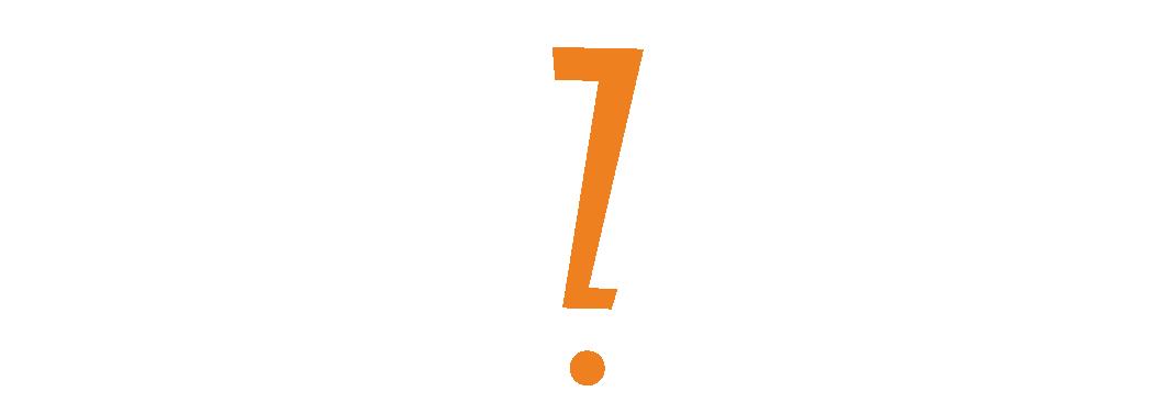 Bluezoom Logo